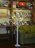 Lightshare 4 Feet Birch Tree, 48 LED Lights, Warm White, For Home, Festival, Party, and Christmas Decoration, Indoor and Outdoor Use