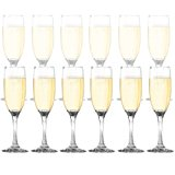 Dailyware™ Toasting Flutes (Set of 12), Elegant Style Glasses, Perfect for Special Occassions