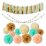Mint Gold Peach Cream Tissue Pom Poms 54 Pcs Paper Flowers Tissue Tassel Paper Garland Kit for Baby shower Party Wedding Birthday Decorations