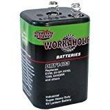 Interstate Batteries DRY1403 6V HD Lantern Battery