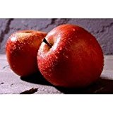 Red Apple - 1941 - Premium Fragrance Oil - BUY 2 and GET 20% OFF 1 Oz (30 ml)