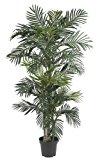 Nearly Natural 5289 Golden Cane Palm Silk Tree, 6.5-Feet, Green