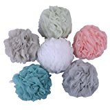 Mesh Poufs Bath and Shower Sponge Exfoliating Mesh Puff Shower Loofahs - Great for Body Wash Pack of 6 (60g/pcs)
