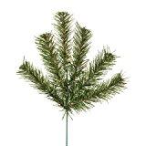 Canadian Pine Spray Green X 6 Tips x 6 pieces