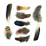 8 kinds of feather ALL in ONE Assorted for DIY, Dream Catcher, Craft (18pcs -22pcs)