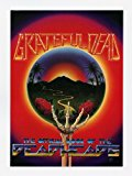Grateful Dead The Official Book of the Deadheads 1983 Promotion Flyer