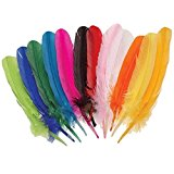 Kid Fun Assorted Color Turkey Feathers