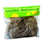 FloraCraft Spanish Moss, 250 cu in (4 Liters) Bag