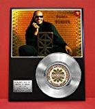Stevie Wonder LTD Edition Platinum Record Display - Award Quality Music Memorabilia Wall Art -