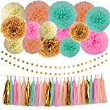 Wedding Party Decorations 42 pcs Gold Mint Green Pink Peach Cream Tissue Paper Pom Poms Flowers Tissue Tassel Garland Gold Glitter Five-pointed Star Garland Kit