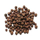 Allspice Berries, Whole - 1/2 Pound ( 8 ounces ) - Dried Whole Jamaican Allspice by Denver Spice