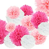 24pcs Craft Paper Tissue Pom Poms , Doubletwo Ceiling Decor Wall Decor; 12in 10in 8in Hanging Paper Pom-poms Flower Ball Wedding Party Outdoor Decoration Flowers Craft Kit (Pink White)