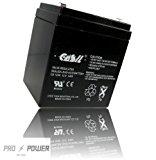CASIL CA-1240 12V 4AH SLA Battery for Casil Ca1240 Alarm Control System (1)
