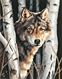 Dimensions Needlecrafts Paintworks Paint By Number, Wolf In Trees