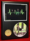 Type O Negative LTD Edition Picture Disc CD Rare Collectible Music Display
