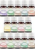 Essential Oils Set 14 - 5 ml Pure Therapeutic Grade Includes Frankincense, Lavender, Peppermint, Rosemary, Orange, Tea Tree, Eucalyptus, Grapefruit, Lemon, Lime, Clove, Spearmint, Lemongrass, Cinnamon